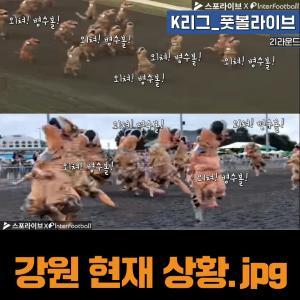 [K리그 풋볼라이브] 외쳐 병수볼!...다시 빛난 '역전의 명수' 강원